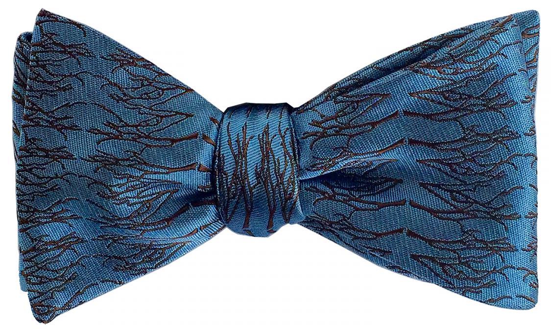 doppeldecker design designer aviation airplane aircraft silk bow tie bowtie winter twig natural flight